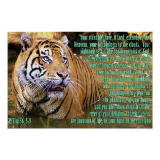 Tiger with Psalm 36:5-9 Poster