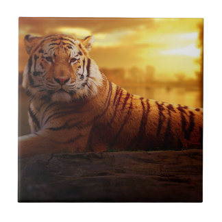 Tiger with Sunset Tile