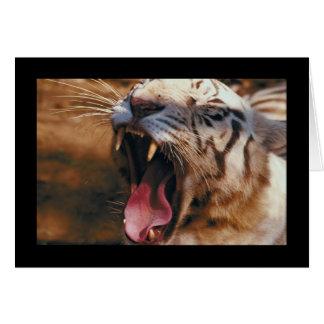 Tiger Yawn Card