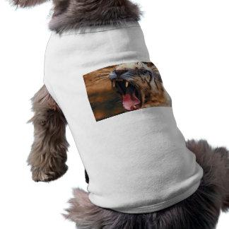 Tiger Yawn Dog Shirt