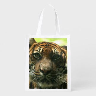 Tiger Grocery Bags