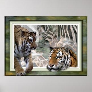 Tiger, Zebra, Giraffe, Lovers Gifts Print