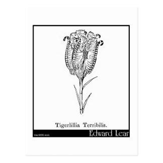 Tigerlillia Terribilis. Postcard