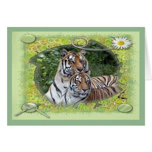 tigers-2-st-patricks-0034 tarjeta de felicitación