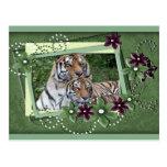 tigers-2-st-patricks-0036 postal