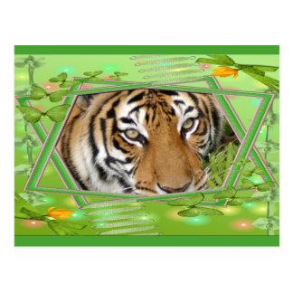tigers-2-st-patricks-0056 postcard