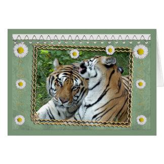 tigers-2-st-patricks-0076 tarjeta de felicitación