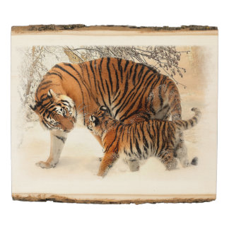 Tigers 2A Wooden Photo Panel