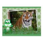 tigers-3-st-patricks-0032 postales