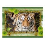 tigers-3-st-patricks-0057 tarjeta postal