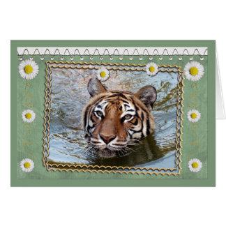 tigers-3-st-patricks-0076 tarjeta de felicitación