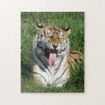 tigers-4-3 rompecabeza