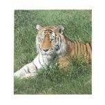 tigers-4-7 bloc de notas
