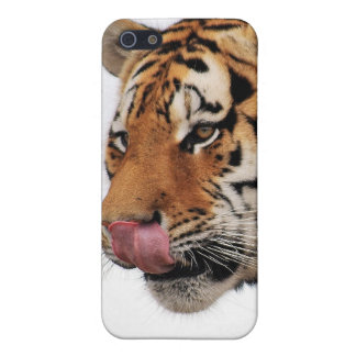 Tigers appetite cover for iPhone SE/5/5s
