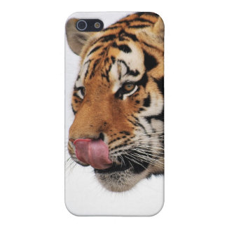 Tigers appetite iPhone SE/5/5s cover