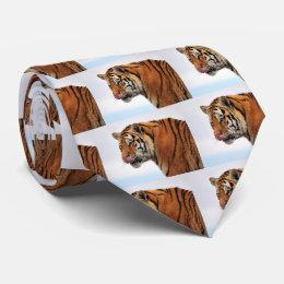 Tigers appetite tie