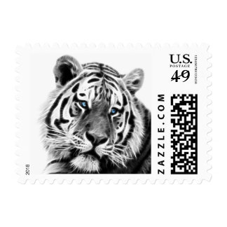 Tigers beauty postage stamps