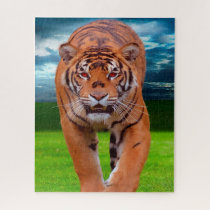 Tigers Big Cats. Jigsaw Puzzle