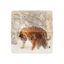 Tigers Checkbook Cover