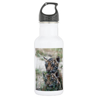 Tigers Cubs Stainless Steel Water Bottle