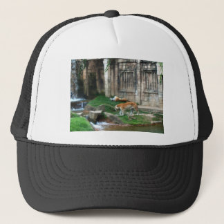 Tiger's Den Trucker Hat