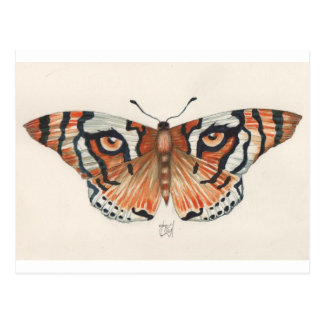 tiger's eye butterfly postcard