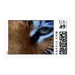 TIGERS EYE. POSTAGE STAMPS