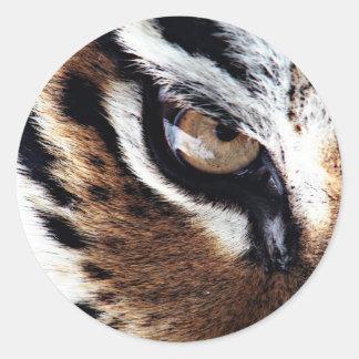Tiger's eye stickers