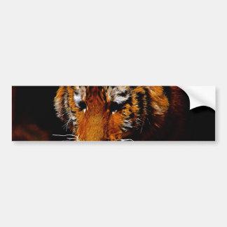 Tigers eyes bumper sticker