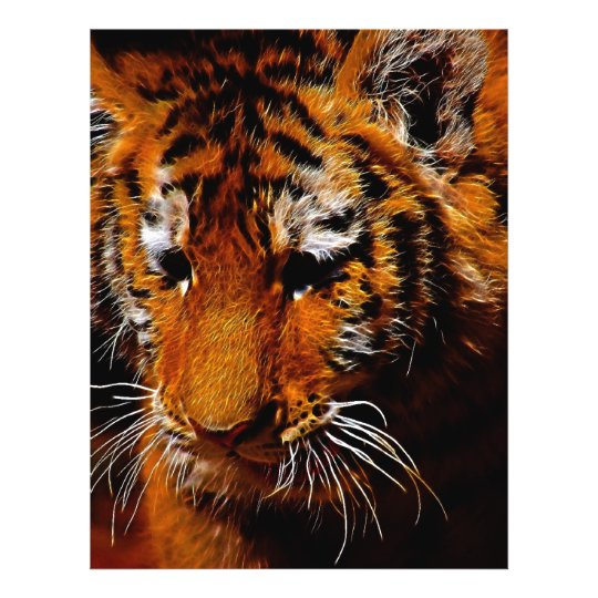 Tigers eyes flyer