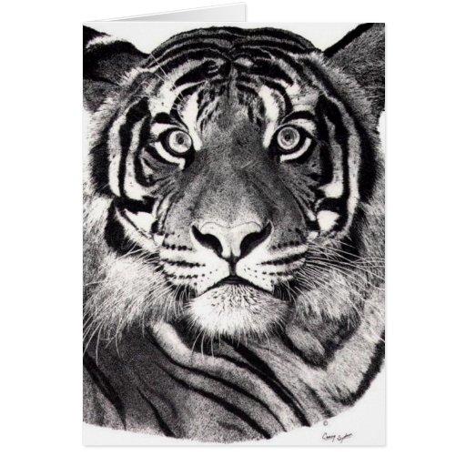 Tiger's Eyes Greeting Card