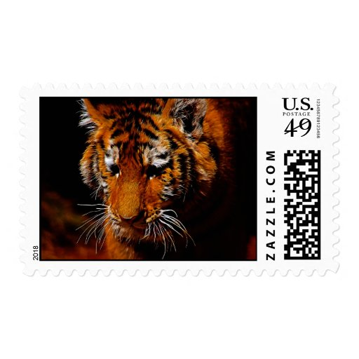 Tigers eyes stamps