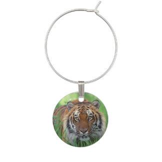 Tigers Eyes Wine Charm