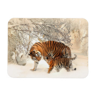 Tigers family magnet