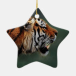 Tigers fangs christmas ornaments
