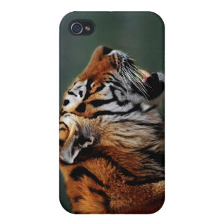 Tigers fangs cover for iPhone 4