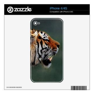 Tigers fangs iPhone 4 skin