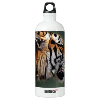 Tigers fangs SIGG traveler 1.0L water bottle