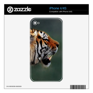 Tigers fangs skin for iPhone 4S