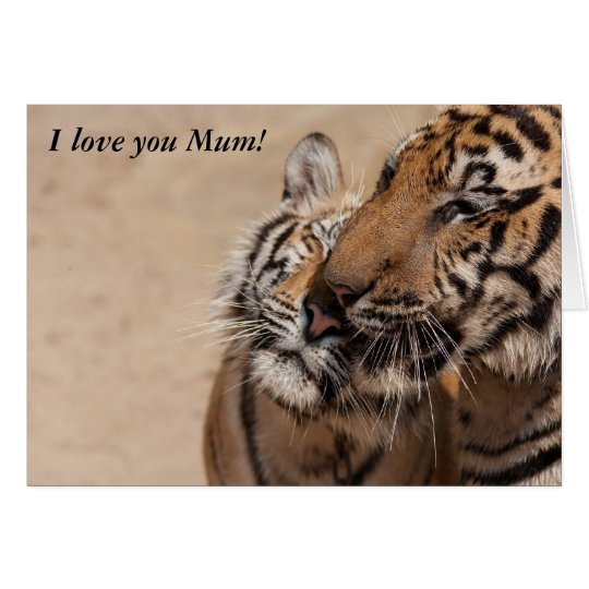 Tigers from Thailand Temple, Love you Mum! Card