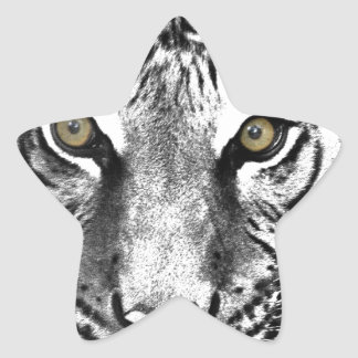 Tiger's Glare Star Sticker