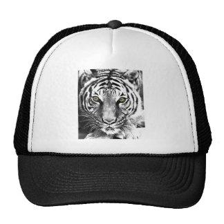 Tiger's Glare Trucker Hat