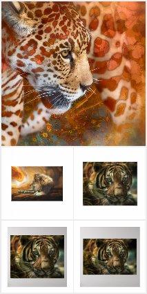 TIGERS * LEOPARDS * LIONS * CHEETAH