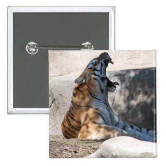 Tigers Roar Pinback Button