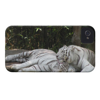 Tigers Samsung Galaxy S T-Mobile Vibrant Case Blackberry Bold Cases