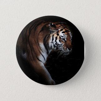 Tigers search pinback button