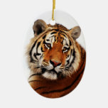 Tigers side glance christmas tree ornaments