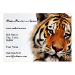 Tigers side glance large business card