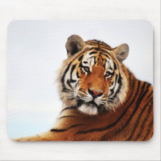 Tigers side glance mouse pad
