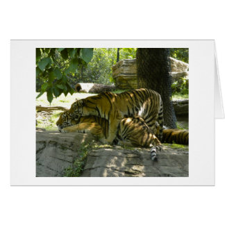 Tigers Together Stationery Note Card
